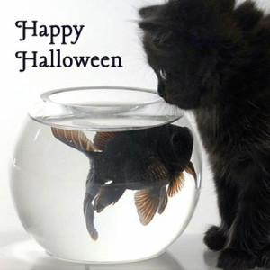 halloween_rhospiritualguide